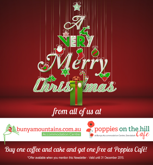 MERRY CHRISTMAS FROM BUNYA MOUNTANS