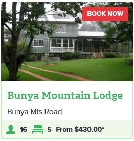 BUNYA MOUNTAINS - BUNYA MOUNTAINS LODGE