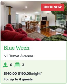 BUNYA MOUNTAINS - BLUE WREN