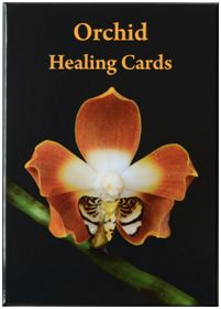 ORCHID ESSENCE CARDS