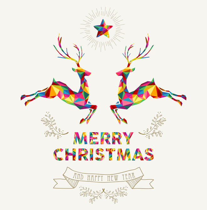 MERRY CHRISTMAS FROM JANE LINDSAY HOMEOPATHY