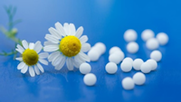 THE DOCTORS CASE FOR HOMEOPATHY